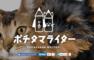 【ポチライター】犬・猫のライティングに特化したクラウドソーシングサービス